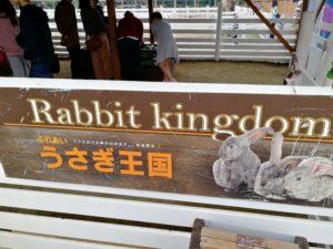 ウサギ 那須どうぶつ王国