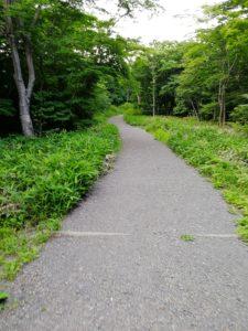 那須 平成の森
