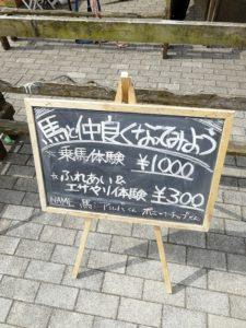 道の駅東山道伊王野で馬さんに合いました。